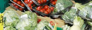 京の旬野菜を宅配しますのイメージ